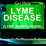 Lyme Disease Podcast picture